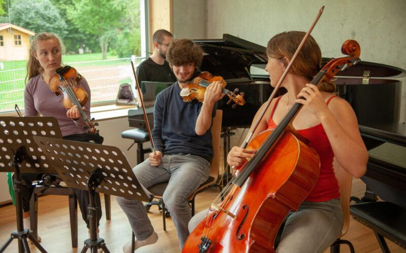 colluvio-Chamber-colluvio-chamber-Music-Academy-rehearsal-oliveramilic19